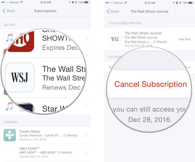 App Store Subscription اب ستور ايفون ايباد