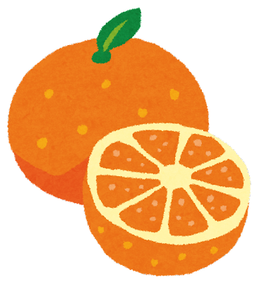 みかん・オレンジ 丸ごと&カットのイラスト(フルーツ)