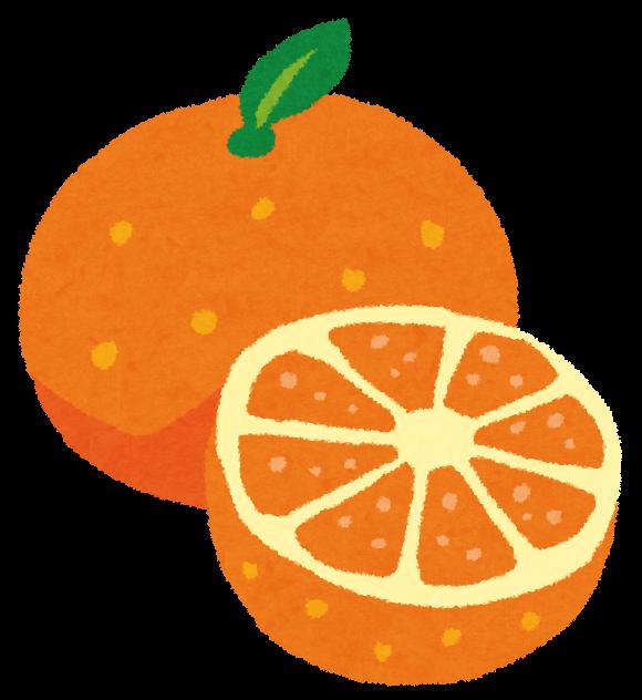 みかん オレンジ 丸ごと カットのイラスト フルーツ かわいいフリー素材集 いらすとや