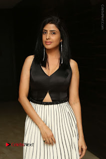 Actress Pragya Stills Beautiful Long Dress at RGV Shiva to Vangaveeti Event  0010.JPG