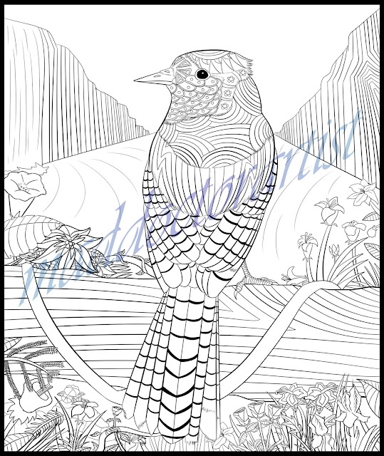 Dr Sam's Birds of the World Colouring Book: Blue Jay