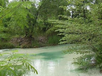 Wanawisata Ciwaringin: Tempat Wisata Alam Menyenangkan dengan Aktivitas Seru di Cirebon