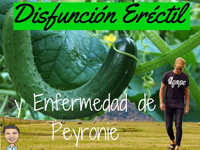 Causas de disfuncion erectil