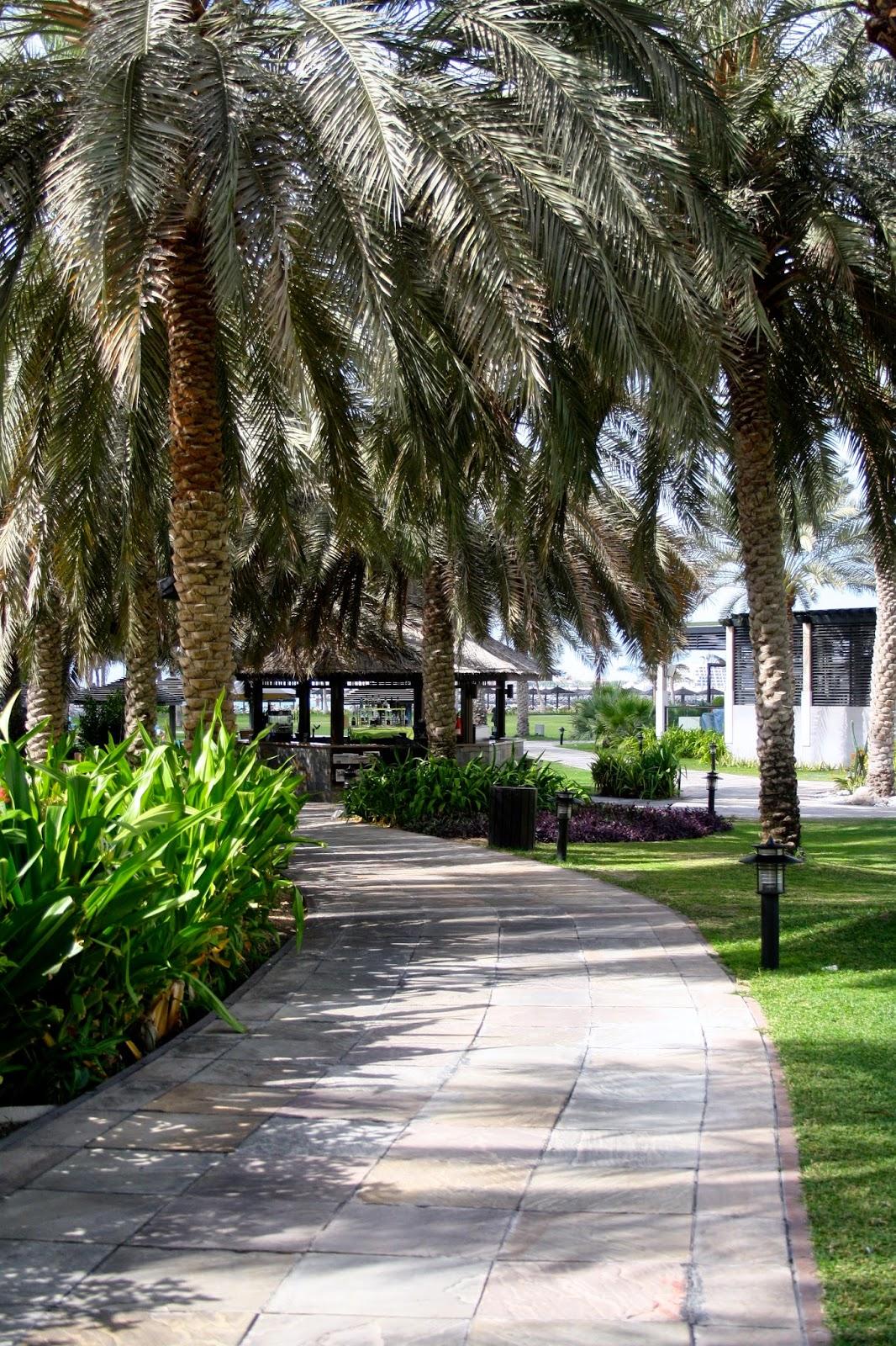 DUBAI PHOTO DIARY I. 14