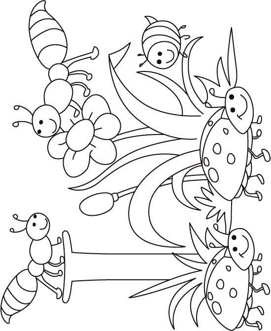 Kelebek Boyama Sayfaları Teknogretmen