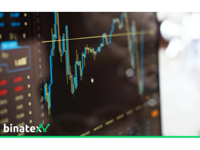 bitcoin dobra investicija ili ne binarne opcije graditelja opcija