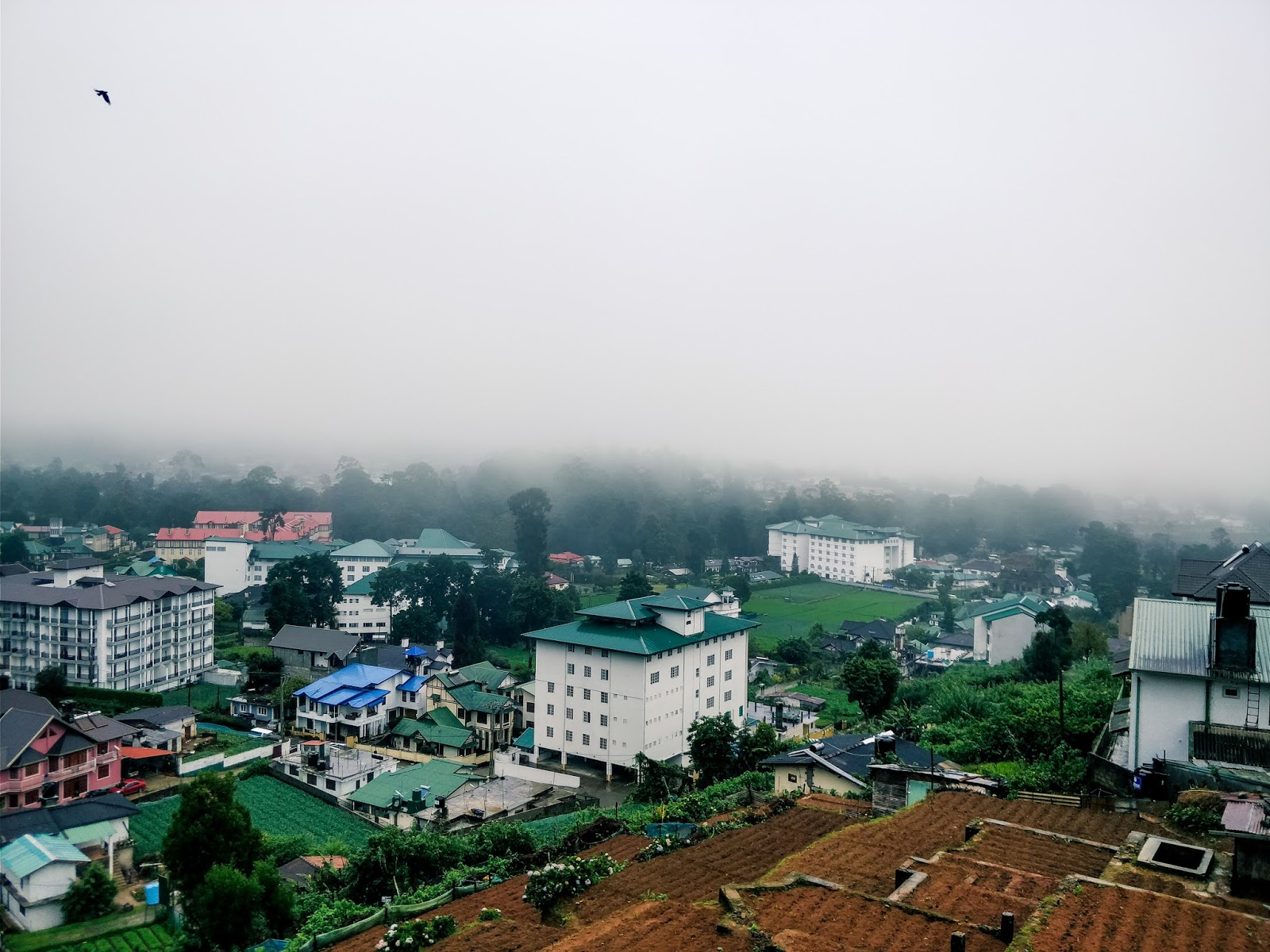 Foggy view from Villa de Roshe in Nuwara Eliya, Sri Lanka