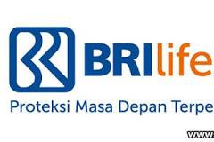 Lowongan Kerja Pekanbaru : PT. Asuransi BRI Life Januari 2018