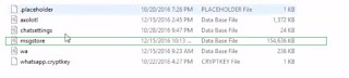 Decrypt-database-file