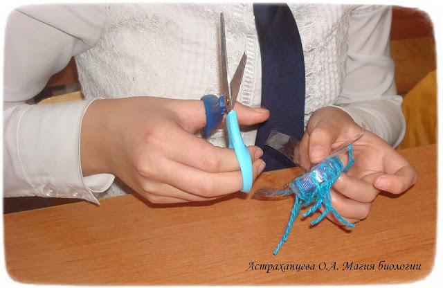 biologicheskie-nastolnye-igry-magiya-biologii