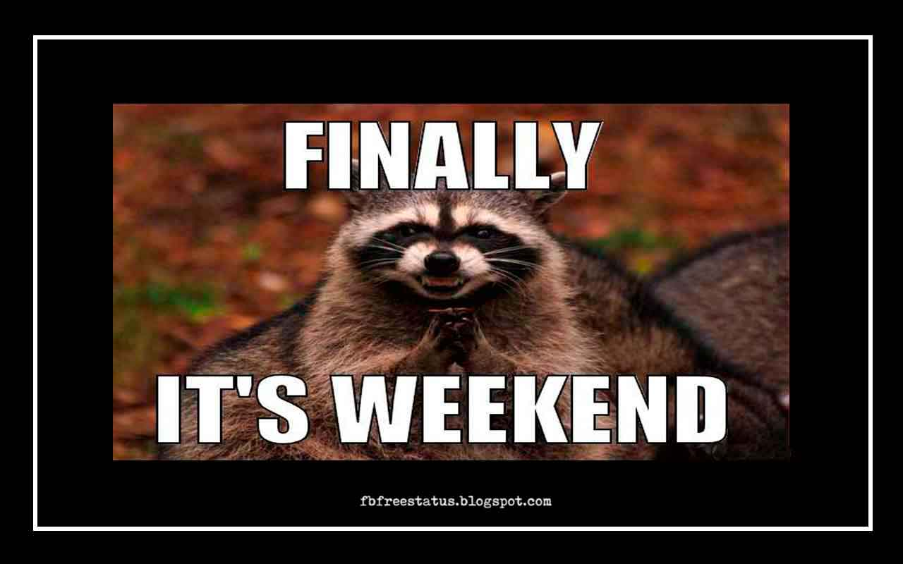 Finally, Its weekend.