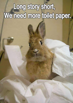 Rabbit Memes 95 likes Rabbits are the master species and its time we show support