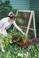 http://thesassysparrowblog.com/2016/07/diy-herb-garden/