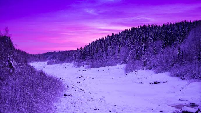 Wallpaper: Winter landscape in purple colors