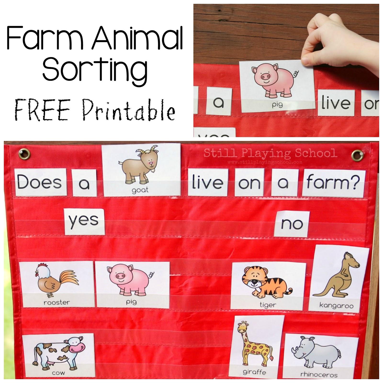 Farm Animal Sorting