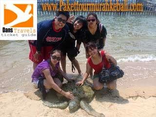 Turtle ISland- Pulau Penyu Watersport Tanjung Benoa
