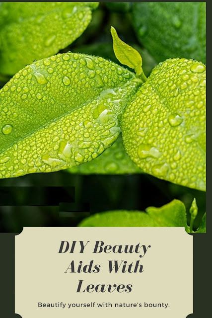Homemade DIY Beauty Aids With Leaves #beautyrecipes #diybeauty
