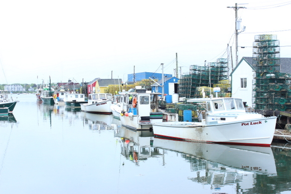 The boats near the pier are great for fishing.