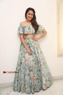 Actress Pragya Jaiswal Stills in Floral Dress at turodu Interview  0096.JPG