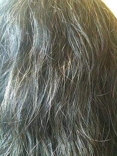 菲比的世界-戲劇‧教育‧生活隨感: 木藍海靈草染髮