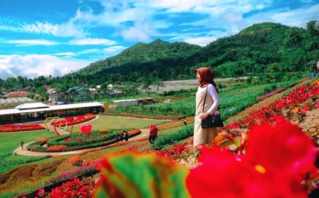 Wisata Pratin Purbalingga: Lokasi dan Harga Tiket Masuk Wisata