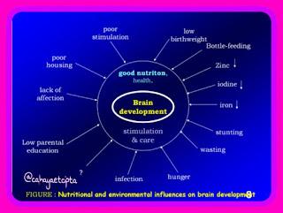 Nutrisi Seimbang Stimulasi Tepat, Optimalkan Tumbuh Kembang