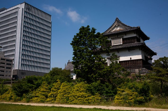 Fukuoka travel guide: castle ruins