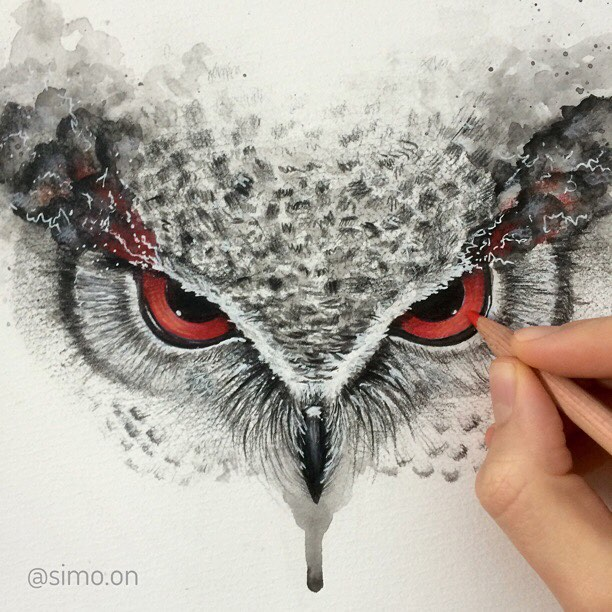01-Anger-Owl-Simon-Balzat-Colored-Pencils-make-Beautiful-Drawings-www-designstack-co