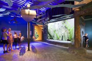 aquarium-manufacturer