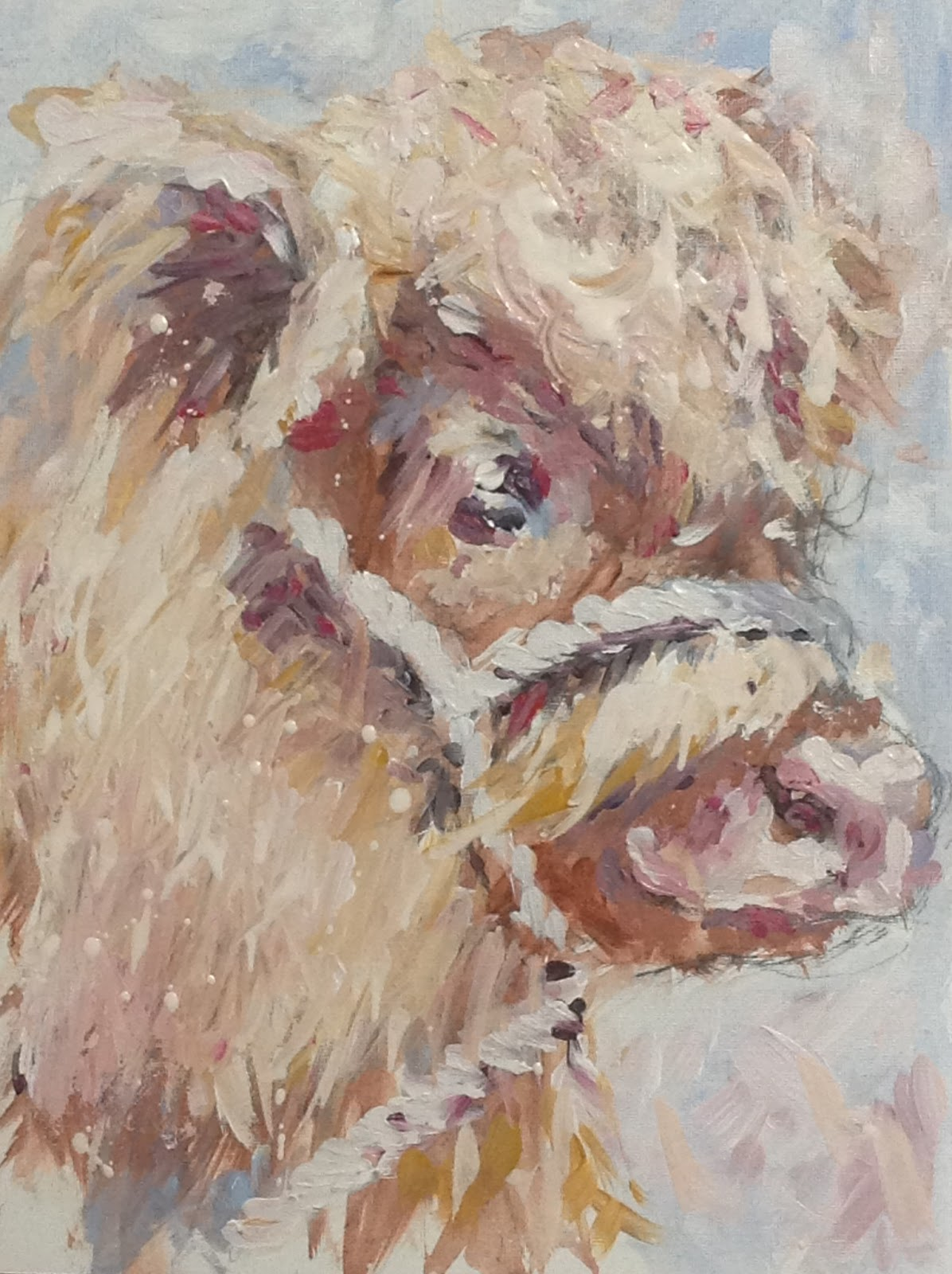 Calf painting, contemporary painting, highland cow art