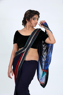 sheril virani in saree15
