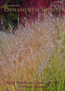 Favourite Ornamental Grasses