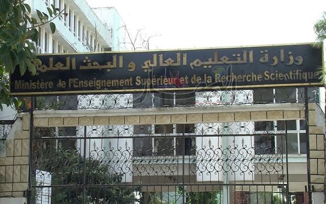 وزارة التعليم العالي لا يمكنها توظيف كل الـدكاترة المتخرجين سنويــا
