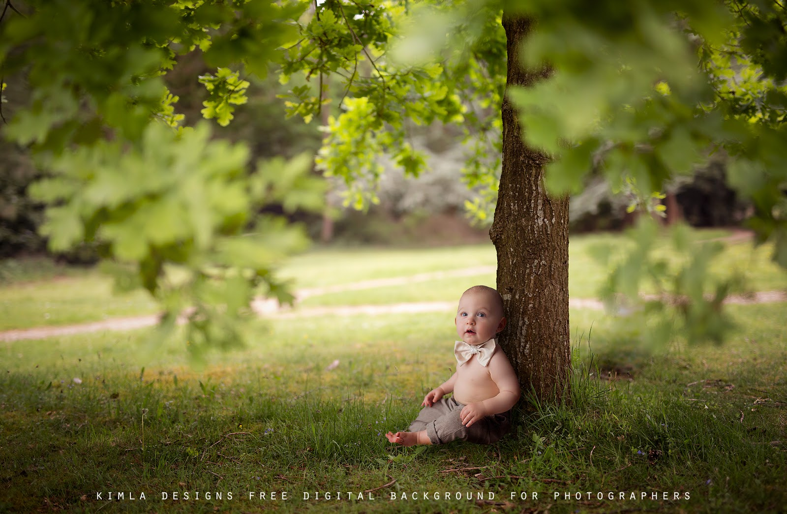 Free Summer Digital Background for Photographers