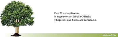 Representantes de la empresa CURTUME CBR se reunieron con concejales y el viceintendente Aguilar. En la ocasión, se informó sobre la situación actual de la planta de tratamiento de efluentes, la cual es propiedad del gobierno, pero cuando se firma el convenio para que la nueva firma se haga cargo de la curtiembre, dicha planta fue entrega en comodato a la empresa para que ellos absorban los costos de funcionamiento.