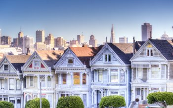 Wallpaper: Painted Ladies