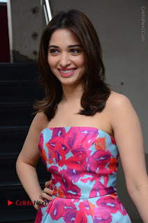Actress Tamanna Latest Images in Floral Short Dress at Okkadochadu Movie Promotions  0026.JPG