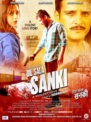 Dil Saala Sanki 2016 Hindi 720p HDRip 800mb