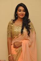Bhanu Shri looks stunning in Beig Saree choli at Kalamandir Foundation 7th anniversary Celebrations ~  Actress Galleries 010.JPG