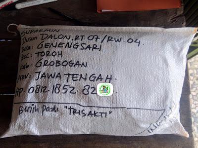 Benih pesanan SUDARMIN Grobogan, Jateng   (Sesudah Packing)
