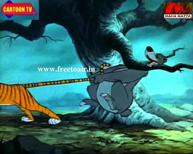 Maha Mazza Hindi Cartoon Channel added on Intelsat 17 Satellite