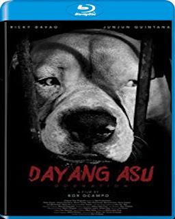 Dayung Asu (2015)