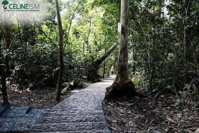 bongao peak trail