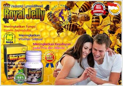 0818 0408 0101 (XL), herbal alami, obat madu, madu anak, madu penyubur, penuaan dini, penambah stamina, herbal madu, obat stamina, vitalitas pria, subur kandungan,