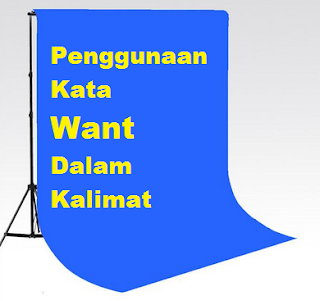 Penggunaan Kata Want Dlam Kalimat