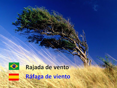 """¿Sabes cuál es la traducción de portugués al español del término """"Rajada""""?"""