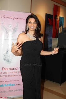 Bhagyashree and Diana Hayden walks the ramp for Mumbai Obstetrics and Gynecological Society Annual Fashion Show 012.JPG