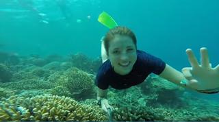 Keindahan dasar laut Karimunjawa