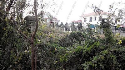 Đất nền biệt thự rộng giá rẻ phường 8 Đà Lạt – BĐS Liên Minh D1213