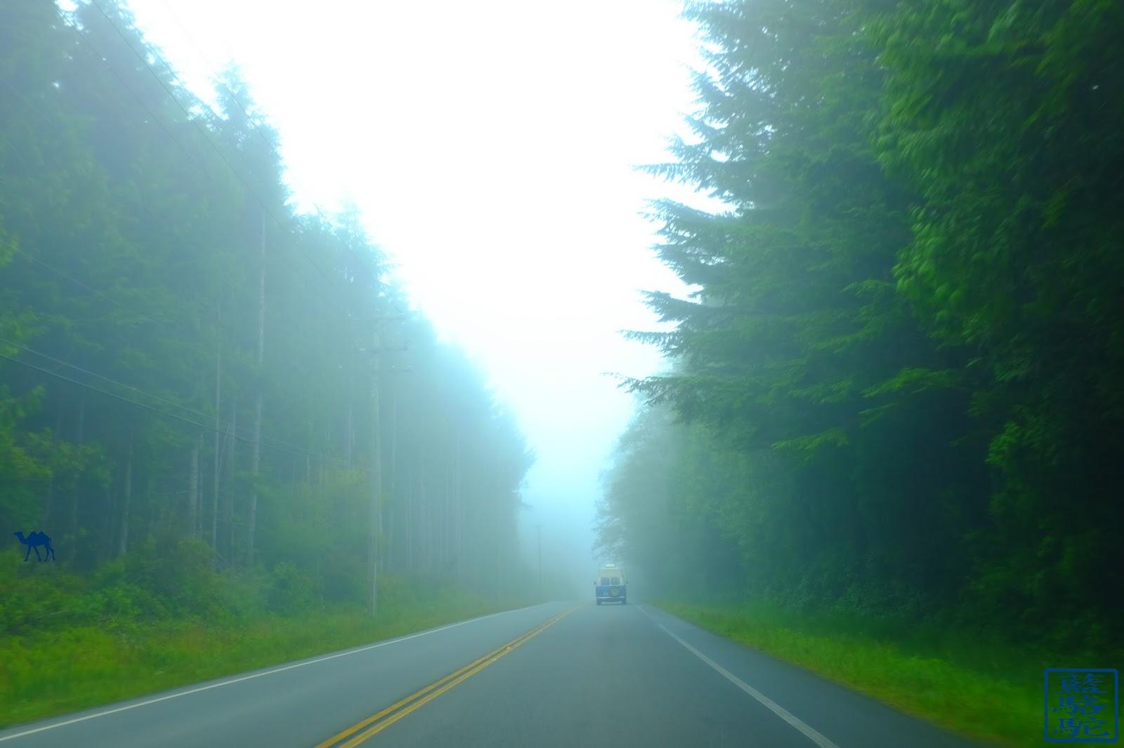 Le Chameau Bleu - Sur Les Routes de Vancouver Island